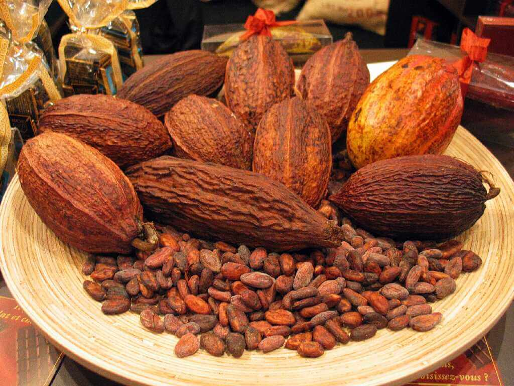 The Indonesian Chocolate Business is Superior in the Market