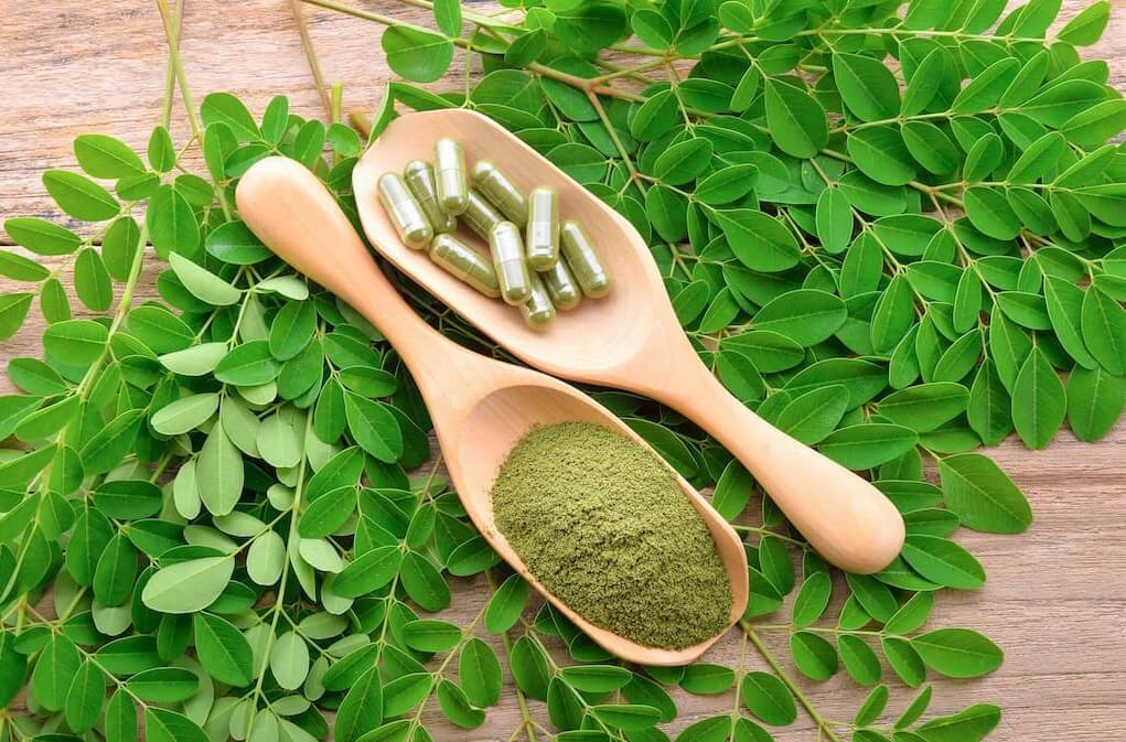 Benefits of Moringa Leaves which are Important for Body Health