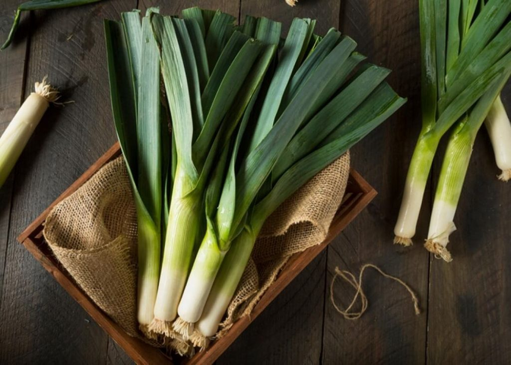 Leeks, Effectively Lower Cholesterol and Maintain Heart Health